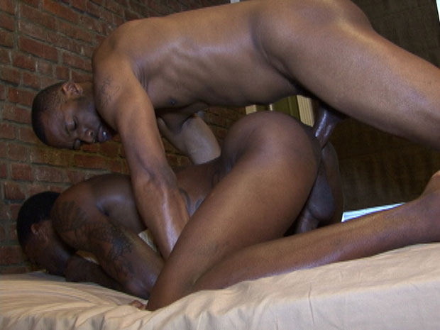 Hotrod and Jordan Stone - BlackBreeders.com