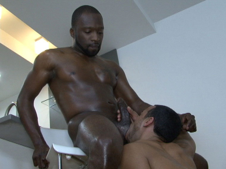 Watch Jai Sean and Envy having bareback sex at Black Breeders