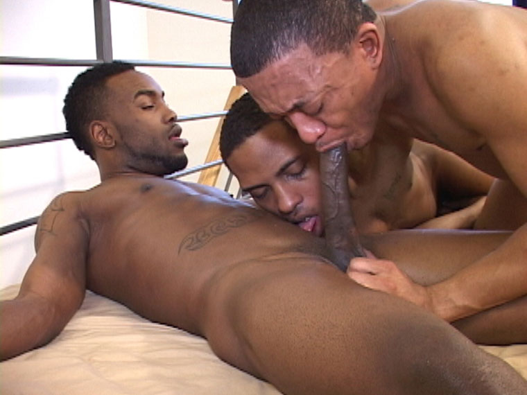 Watch Kannon, Ice, Phoenix and Xman barebacking at Black Breeders