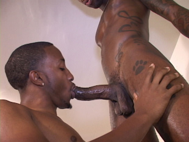 Watch Woo, Hotrod and Khrome have bareback sex at Black Breeders