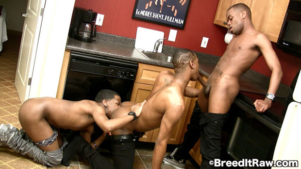 Watch Remy Mars, Jermany and Breakz have bareback sex at Breed It Raw