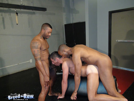Watch Kamrun, Buster Sly and Zac Zaven have bareback sex at Breed Me Raw