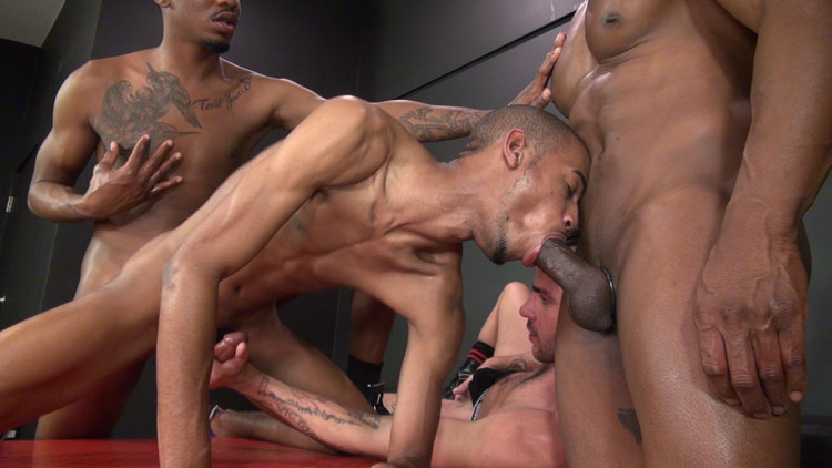 Champ Robinson, Lukas Cipriani, Knockout and Tigger Redd - Raw and Rough