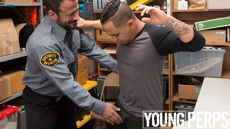 Vinnie Stefano - Young Perps