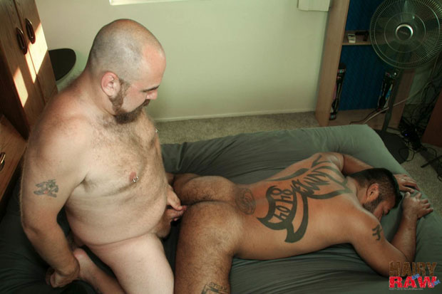 Beefy and Hairy Guys Enjoy Barebacking and Feeling the Pleasure of Raw Flesh