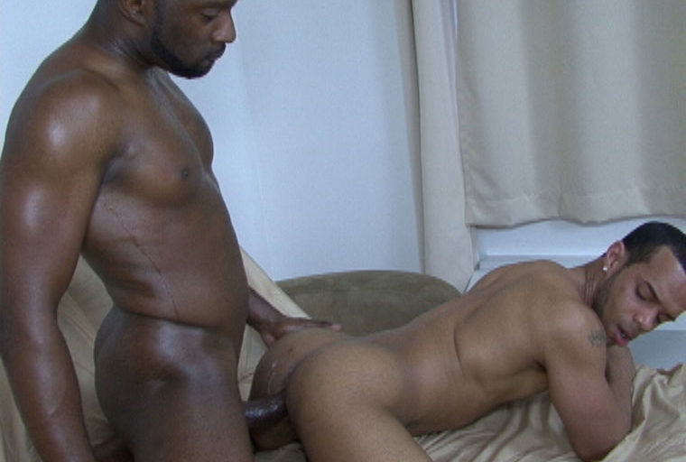 Preview the Climax of the East vs West Barebacking Series at Black Breeders